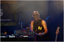 Pinchando en La Concha Reggae Vibes (2011)