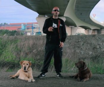 Fotograma del vídeo de Woof! de Priteo