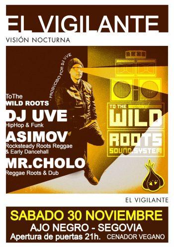 Visión Nocturna en directo en Segovia junto a To The Wild Roots